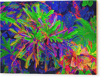Wood Print featuring the photograph Tropicals Gone Wild by David Lawson