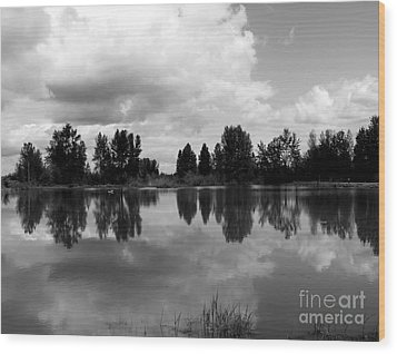 Trout Pond Reflection Wood Print