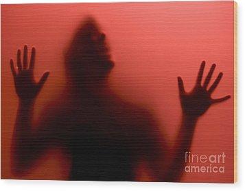 True Blood Wood Print by Diane Diederich