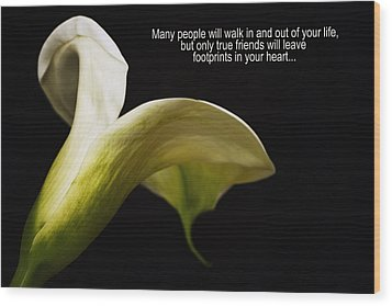 Wood Print featuring the photograph True Friends by Kim Andelkovic
