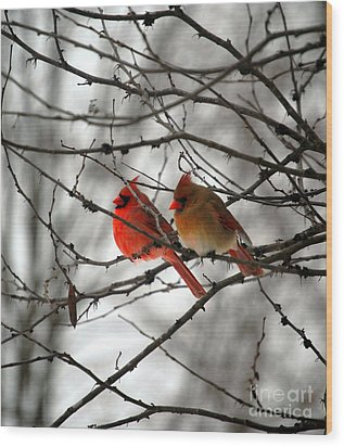Wood Print featuring the photograph True Love Cardinal by Peggy Franz