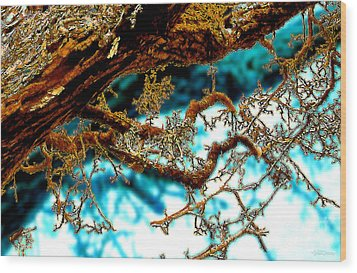 Wood Print featuring the digital art Truncated by Cristophers Dream Artistry