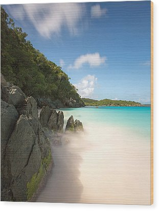 Trunk Bay At St. John Us Virgin Islands Wood Print