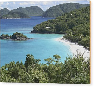 Wood Print featuring the photograph Trunk Bay II by Carol  Bradley
