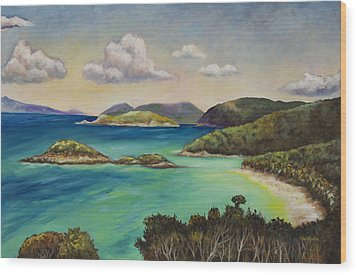 Trunk Bay Overlook Wood Print by Eve  Wheeler