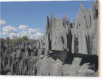 Tsingy De Bemaraha Madagascar 2 Wood Print by Rudi Prott