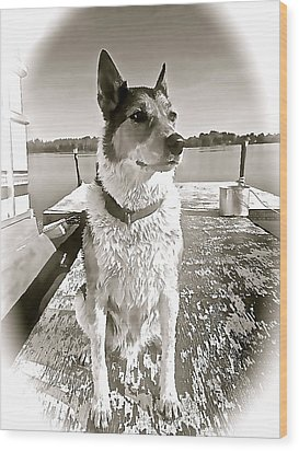 Tucker's Tuesday Wood Print by Danielle  Broussard