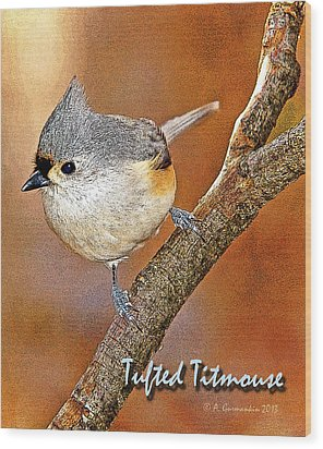 Wood Print featuring the photograph Tufted Titmouse by A Gurmankin