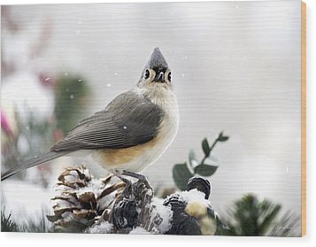 Tufted Titmouse In The Snow Wood Print by Christina Rollo
