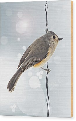 Tufted Titmouse Twinkle Wood Print by Bill Tiepelman