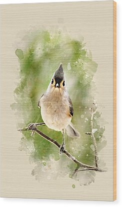 Tufted Titmouse - Watercolor Art Wood Print by Christina Rollo