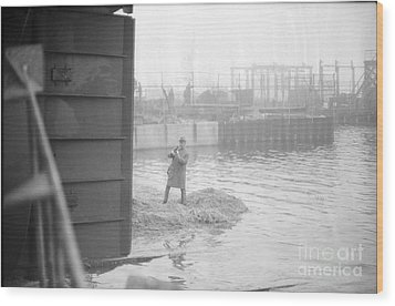 Wood Print featuring the photograph Tug Boat by Steven Macanka