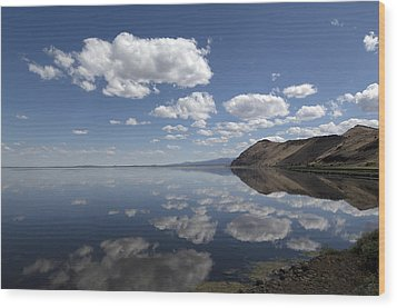 Tule Lake In Northern California Wood Print by Carol M Highsmith