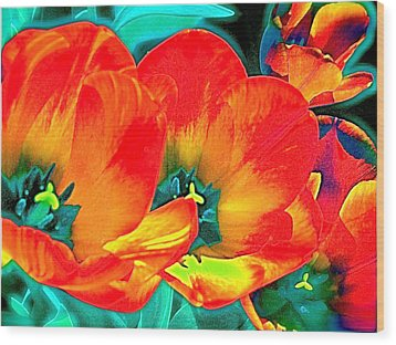 Wood Print featuring the photograph Tulip 1 by Pamela Cooper