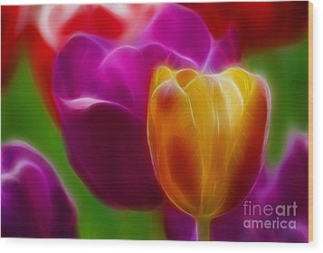 Tulip-7011-fractal Wood Print by Gary Gingrich Galleries
