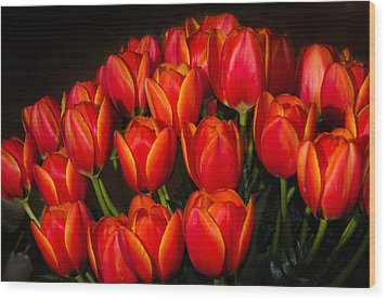 Tulip Bouquet Wood Print by Brian Xavier
