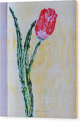Tulip For You Wood Print by Sonali Gangane