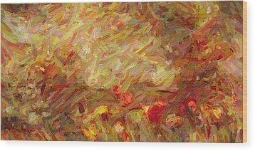 Tulip Garden Abstract Wood Print by Kenny Francis