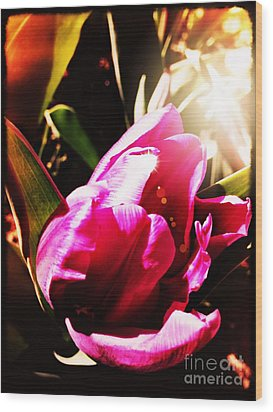 Wood Print featuring the photograph Tulip by Leslie Hunziker