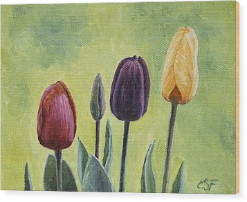 Tulip Trio Wood Print by Crista Forest