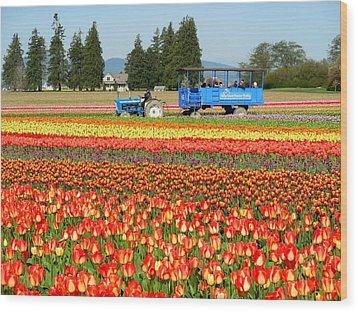 Tulip Wagon Wood Print by Karen Molenaar Terrell