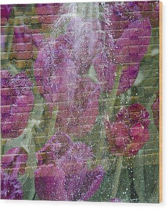 Tulip Waterfalls Wood Print by Penny Lisowski