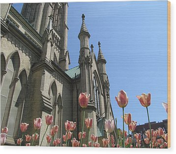 Tulip With The Church Wood Print by Alfred Ng