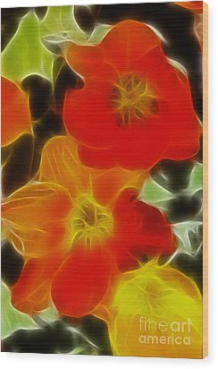 Tulips-6681-fractal Wood Print by Gary Gingrich Galleries