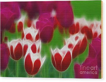 Tulips-6848-fractal Wood Print by Gary Gingrich Galleries