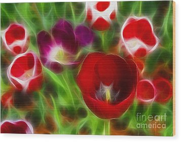 Tulips-6967-fractal Wood Print by Gary Gingrich Galleries