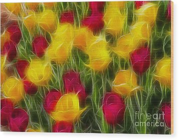 Tulips-7106-fractal Wood Print by Gary Gingrich Galleries