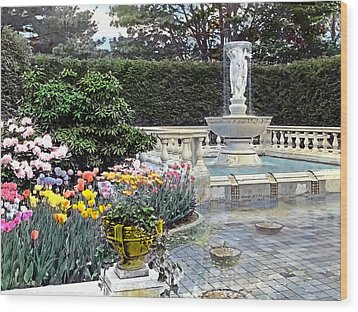 Tulips And Fountain Wood Print by Terry Reynoldson