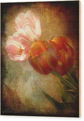 Tulips Wood Print by Bill Voizin