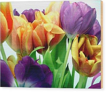 Tulips Bouquet Wood Print by Karen Nicholson