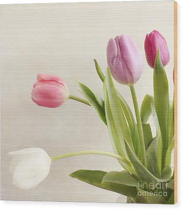 Tulips Wood Print by LHJB Photography