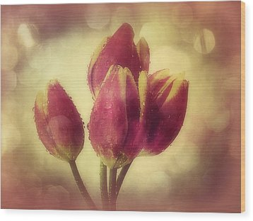 Tulips In The Rain Wood Print by Anne Macdonald