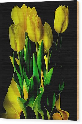 Wood Print featuring the photograph Tulips by Joseph Hollingsworth