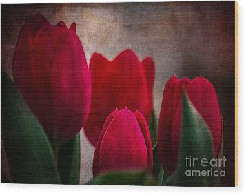 Tulips Wood Print by Judy Wolinsky