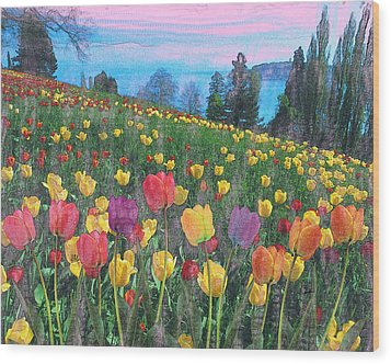 Tulips Lake Wood Print by Anthony Caruso