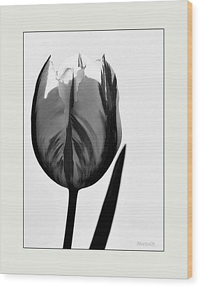 Wood Print featuring the photograph The Light Within by Marija Djedovic
