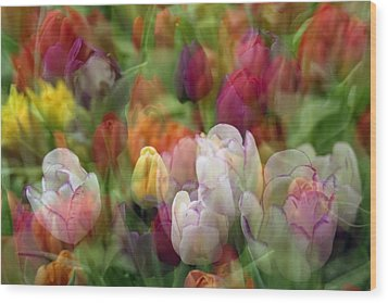Tulips Wood Print by Penny Lisowski
