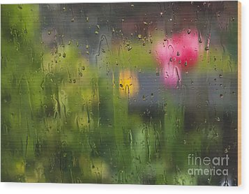 Tulips Through The Rain Wood Print