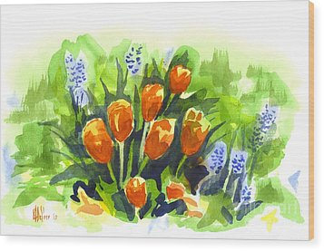 Tulips With Blue Grape Hyacinths Explosion Wood Print by Kip DeVore