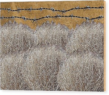 Tumbleweed And Barbed Wire Wood Print by Suzanne Powers