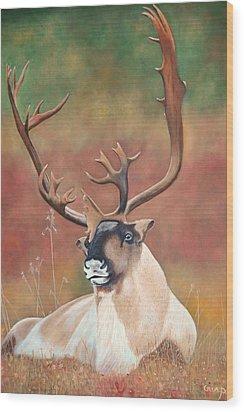 Tundra Caribou Wood Print
