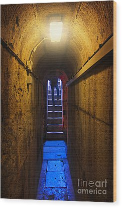 Tunnel Exit Wood Print by Carlos Caetano