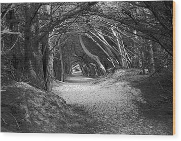 Tunnel To The Dunes In Black Wood Print