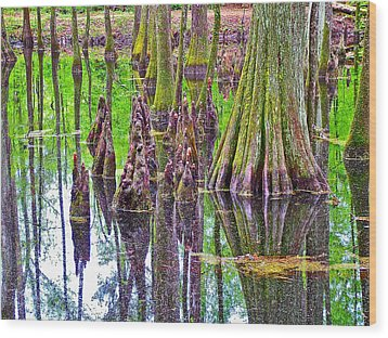 Tupelo/cypress Swamp Reflection At Mile 122 Of Natchez Trace Parkway-mississippi Wood Print by Ruth Hager