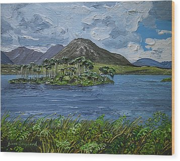 Derryclare Lake Recess Connemara Wood Print