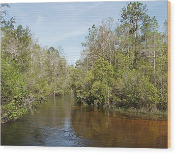 Wood Print featuring the photograph Turkey Creek Nature Trail In Niceville Florida by Teresa Schomig